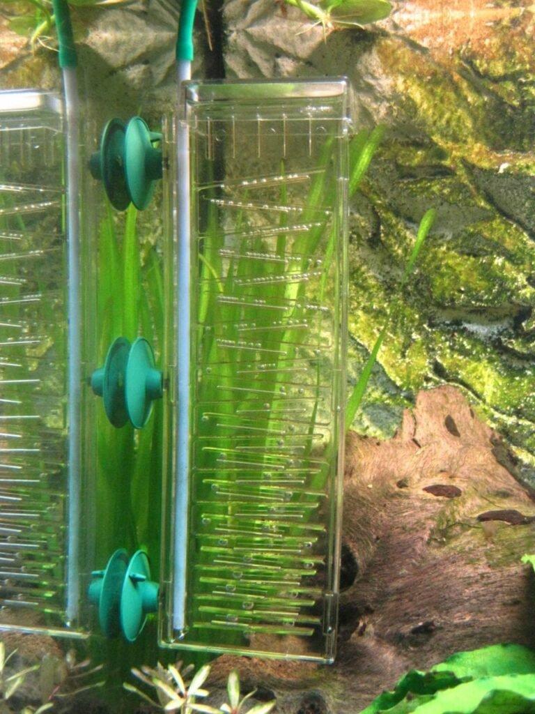 Kleine, hängenbleibende Blasen im Dennerle CO² Flipper