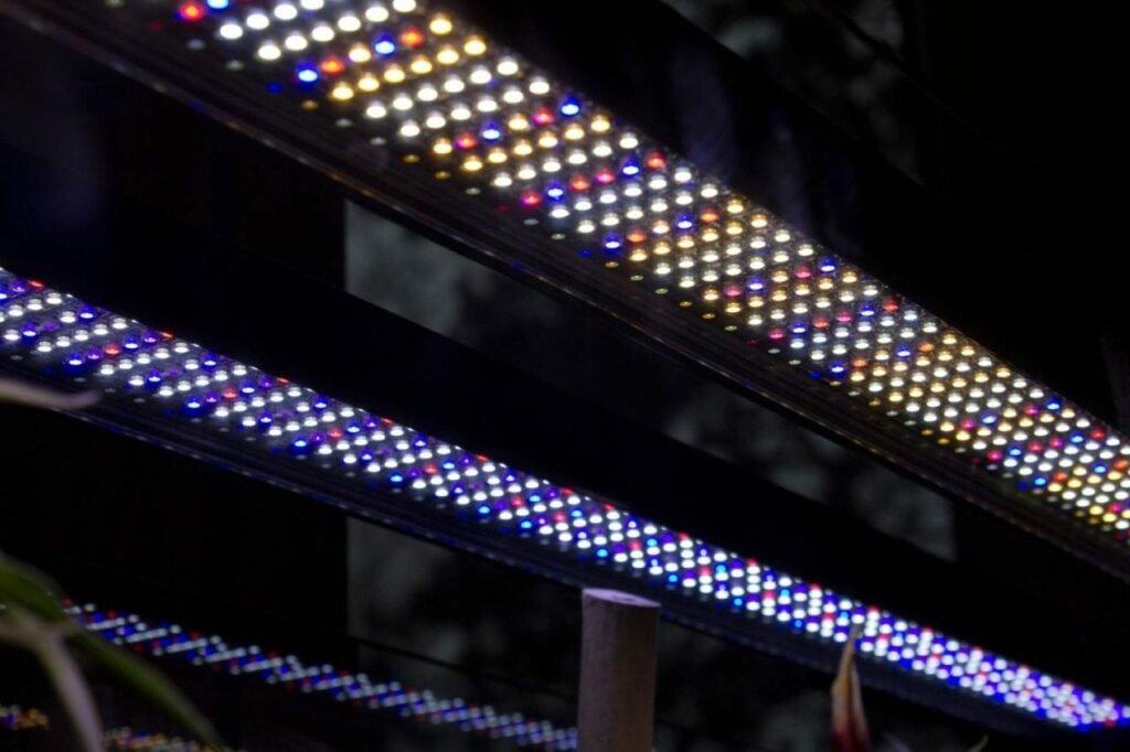 Die einzelnen Chips des Fluval Aqualife and Plant LED-Balken
