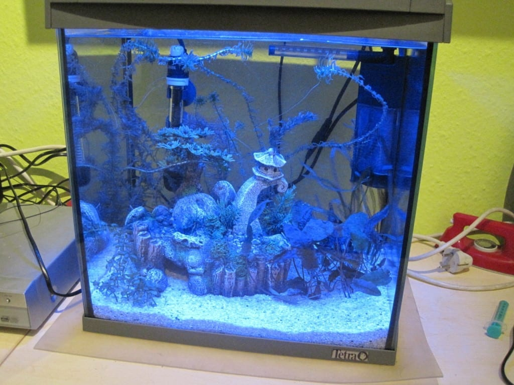 tetra aquaart 30 aquarium im test aquarium welt. Black Bedroom Furniture Sets. Home Design Ideas