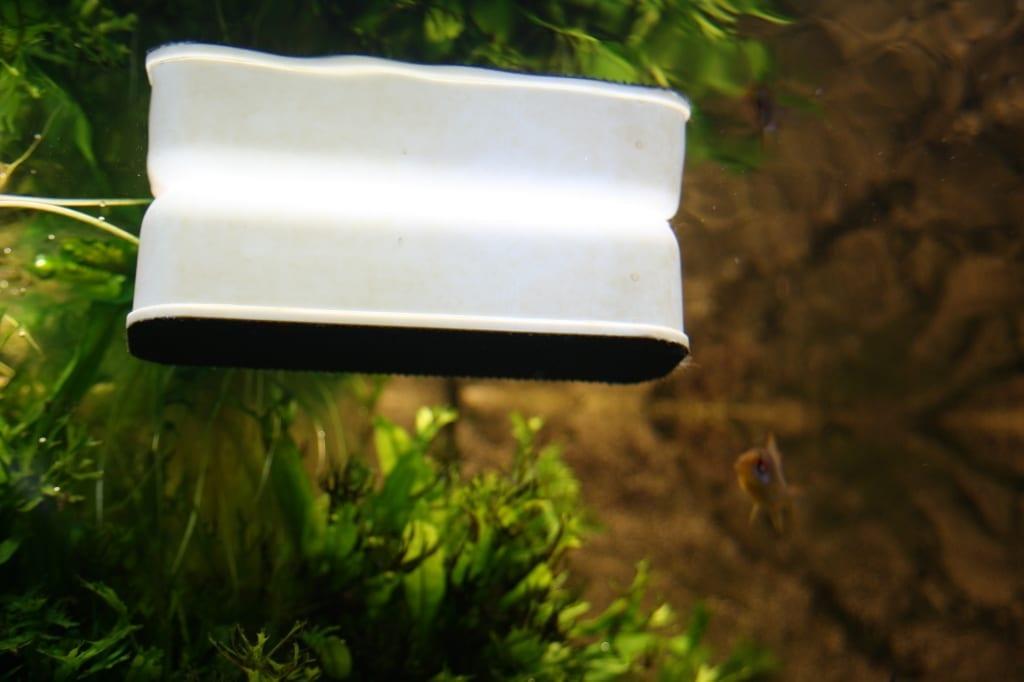 Sogar Reinigungsmagneten wie dieser JBL-Floaty werden aus Kunststoffen hergestellt.