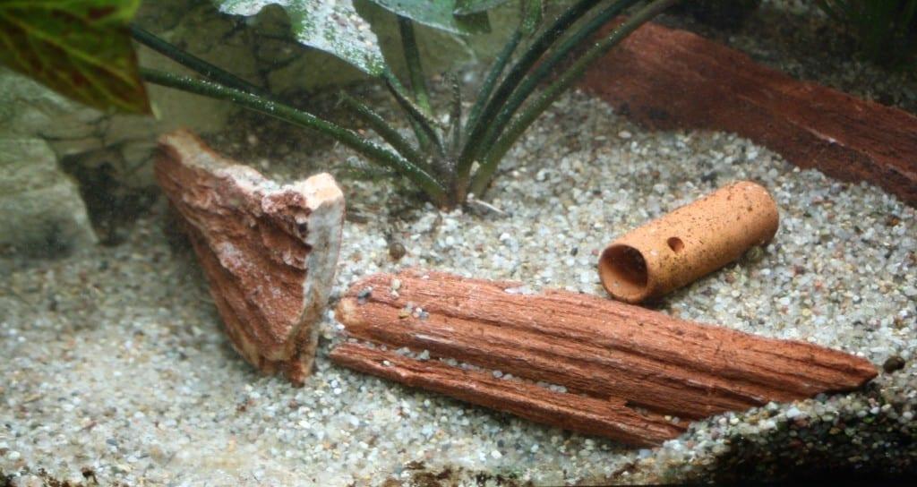 Der Bereich in dem die Sandkiste entstehen soll wurde durch Steinholz abgetrennt und weitestgehend von gröberem Kies befreit.