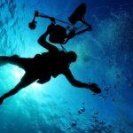 Warum die Aquarium Beleuchtung  wichtig ist