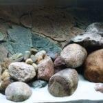 Seachem Purigen im Aquarium nutzen