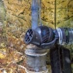 Warum eine Strömungspumpe im Süßwasser Aquarium Sinn macht