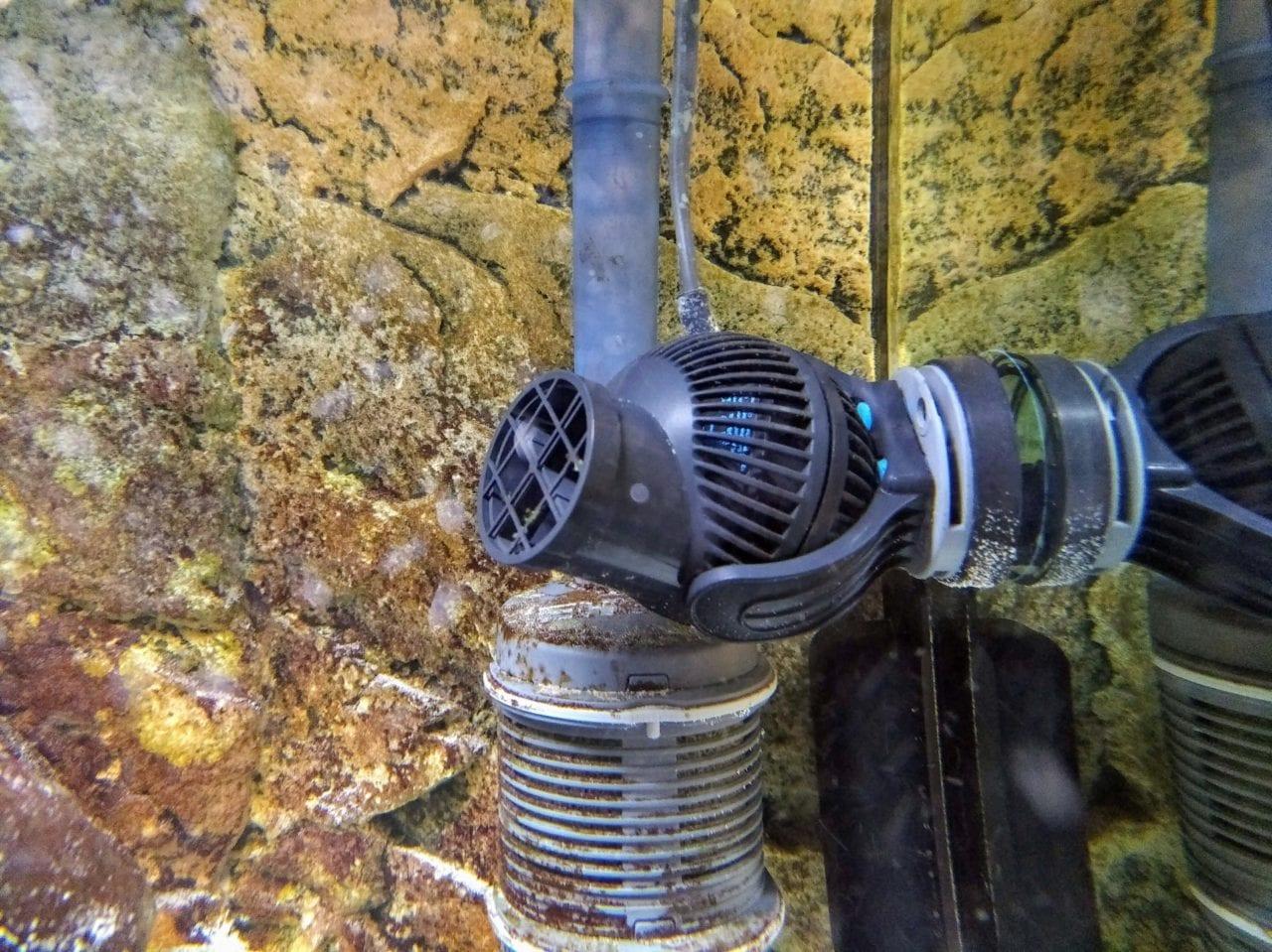 Strömungspumpe Tunze Nanostream 6015 in einem Süßwasser Aquarium