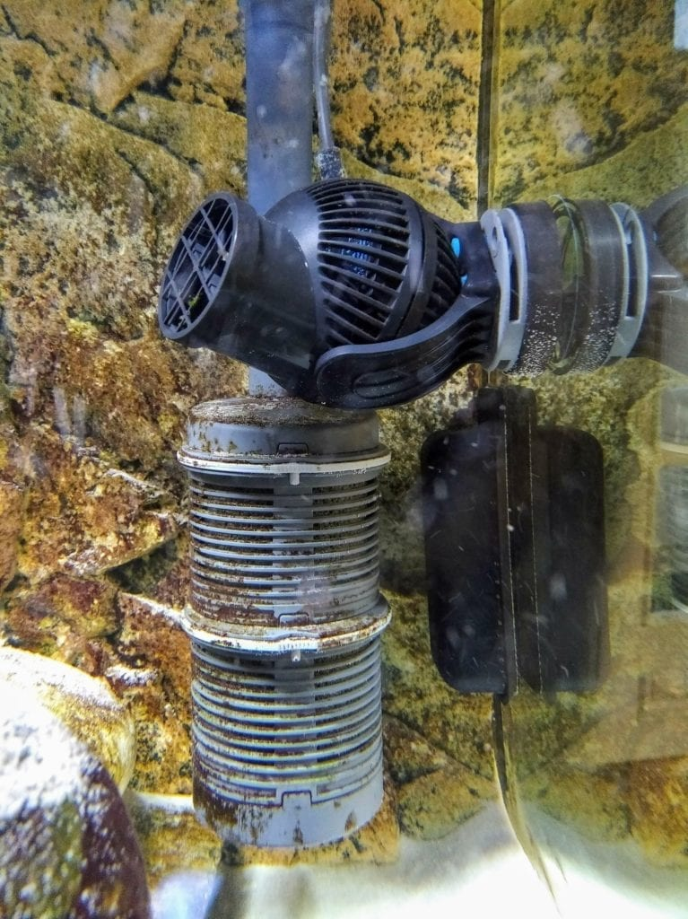 Strömungspumpe vor einem eheim Vorfilter